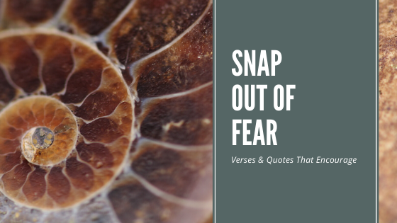 SNAP Out Of The Spiral